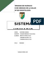 Monografia de Sistema Urinario