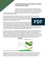 Parcela Practica Integral Demostrativa De Cultivo De Stevia, Para Adiestrar En El Manejo Del Cultivo