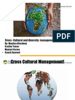 Cross Cultural and Diversity Management