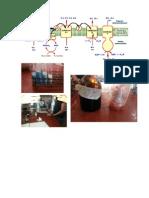 practica de laboratorio bioprocesos