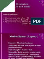 DMS. K09. Bakteri Penyebab Penyakit Kulit