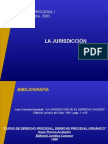 Procesal_organico_ jurisdiccion