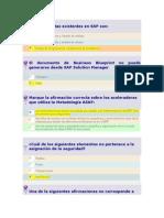 Cuestionario de Preguntas SAP
