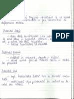 Modurile si timpurile verbale - roluri. (1).pdf