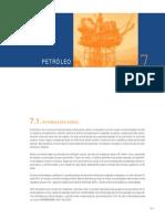 07-Petroleo
