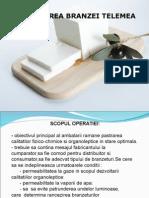 204073556-ambalarea-branzeturilor-proiect.ppt