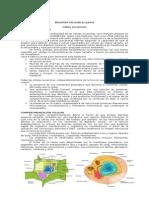 Biologia Celular 2 2015