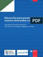 Implementacion Sector Lengua Indigena(2012)