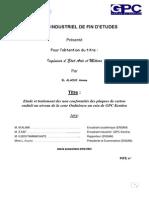 Rapport Pfe Gpc Kénitra de Asmae El Alaoui