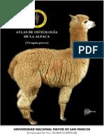 Osteología de la Alpaca Adulta (Atlas)
