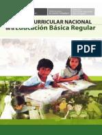 dcn2009final.pdf