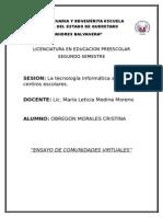 Ensayo de Comunidades Virtuales (Cristina Obregón)