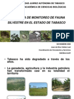 Fauna y Flora en Tabasco