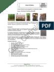 FT-ID-19 Ficha Tecnica Ultrafoam Growing