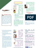 Leaflet Cacingan
