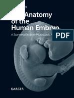 The Anatomy of Human Embryo
