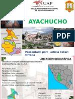 AYACUCHO EXPOsicion Leticita