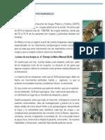 DLM POSTQUIRURGICO 1.pdf