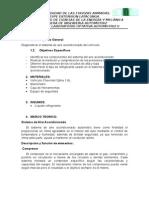 Informe Optativa II