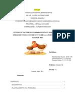 Proyecto FEPA gallinas ponedoras