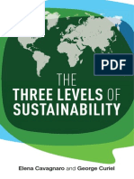 Three Levels of Sustainability