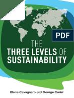 Three Levels of Sustainability
