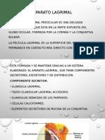 Aparato Lagrimal y Lagrima ITSCO Ppt