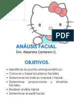 14.-Analisis-facial.pdf