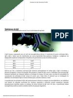 Subclasses de IgG _ Biomedicina Padrão