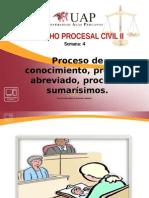 4. PROCESO DE CONOCIMIENTO, PROCESO ABREVIADO, PROCESOS SUMARÍSIMOS..ppt