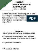 Higado Doc.mejia -Cirugia