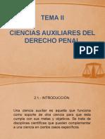 presentacion derecho penal II.pptx