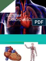 Sistema Circulatorio2015.pptx
