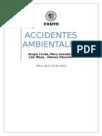 ACCIDENTES AMBIENTALES