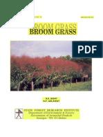 broom grass.pdf