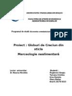 Coperta proiect