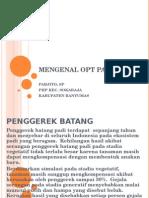 Copy of Mengenal Opt Padi