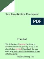 Tree Identification pp.ppt