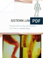 5-Sistema Linfatico 2015