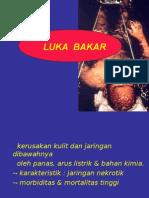 Luka Bakar Umj