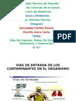 Vias de Entrada Rutas de Exposicion Elementos y Valoracion. Grupo No 6