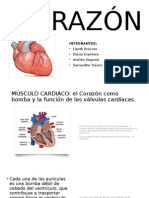 CORAZÓN2-2-1.pptx