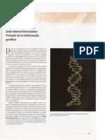 Cap 11 Acido Desoxirribonucleico