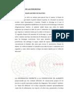 Clasificación de Las Feromonas