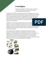Organización ecológica