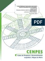 Basicos Petrobras (1)