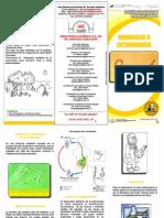 oxiuriasis-enterobiosis.pdf
