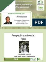 Análisis Ambiental, Agua en el MFS - Matilde López