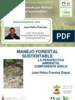 Análisis Ambiental, Suelo en el MFS - Juan Pablo Fuentes