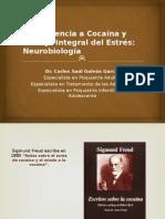 Cocaina Dr Galvan G Carlos